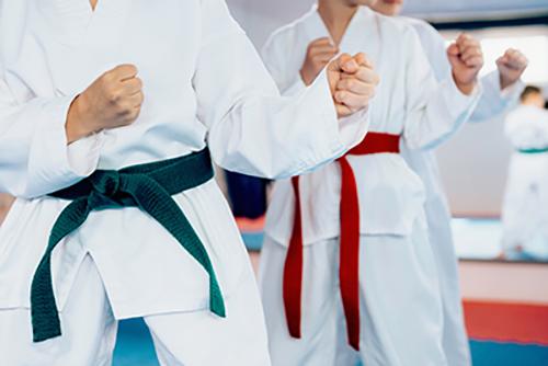 Tipos de karate: ¿Cuál se adapta mejor a mi hijo?