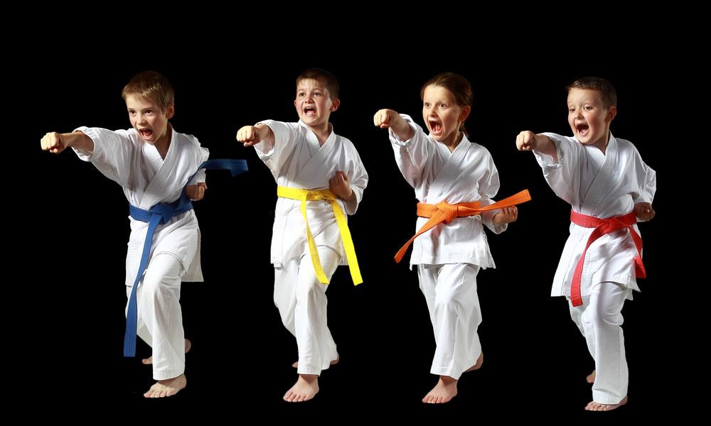 ¿Cuál es el orden de colores del cinturón de karate?